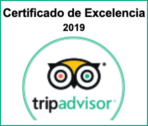 TripAdvisor 2021